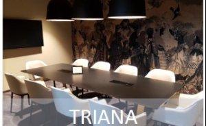 Triana #4