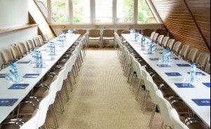 Sala konferencyjna (Biały Potok) #6