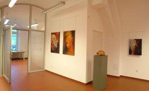 Galeria #13