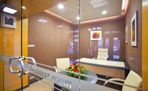 Business Room #9