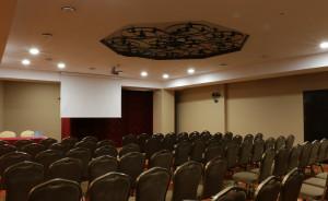 Sala Księżnej Anny #6