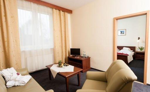 Hotel *** Hotel i Restauracja ARKADIA*** / 6