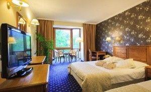 zdjęcie pokoju, Hotel Litwor*****, Zakopane