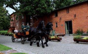 Pałac Mierzęcin Wellness & Wine Resort Obiekt szkoleniowo-wypoczynkowy / 19