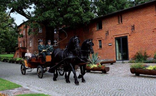 Obiekt szkoleniowo-wypoczynkowy Pałac Mierzęcin Wellness & Wine Resort / 36