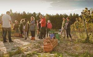 Pałac Mierzęcin Wellness & Wine Resort Obiekt szkoleniowo-wypoczynkowy / 4