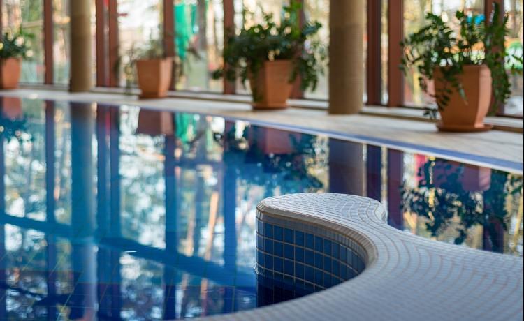 Hotel **** ****Hotel Dom Zdrojowy Resort & SPA / 17