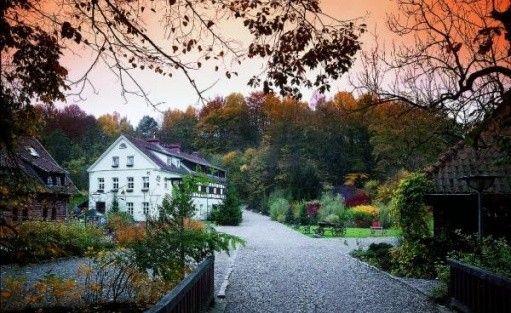 Centrum szkoleniowo-konferencyjne Młyn Klekotki Resort&SPA / 1