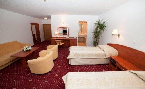 Hotel *** Hotel Brda ***  / 8