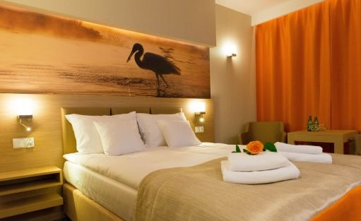 Hotel **** Hotel Amazonka CONFERENCE & SPA**** / 12
