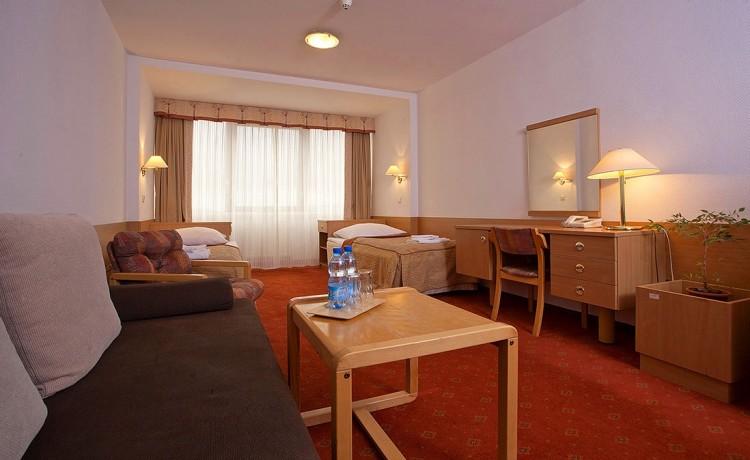 Hotel ***** Interferie Sport Hotel Bornit w Szklarskiej Porębie / 25