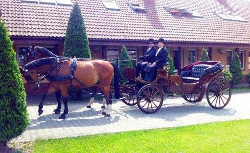 Hotel *** Hotel Sypniewo / 23
