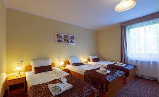 Hotel *** Hotel Vestina / 10