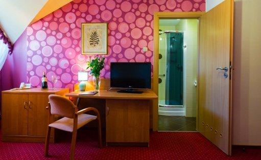 Hotel *** Hotel Ognisty Ptak / 15