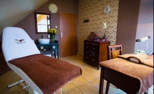 Hotel Ognisty Ptak Hotel *** / 11