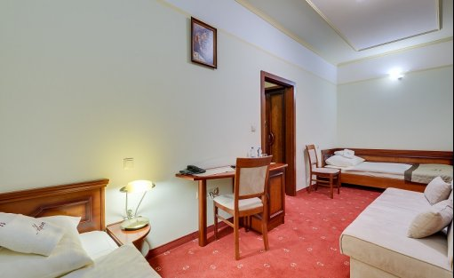 Hotel ** Alpin / 5