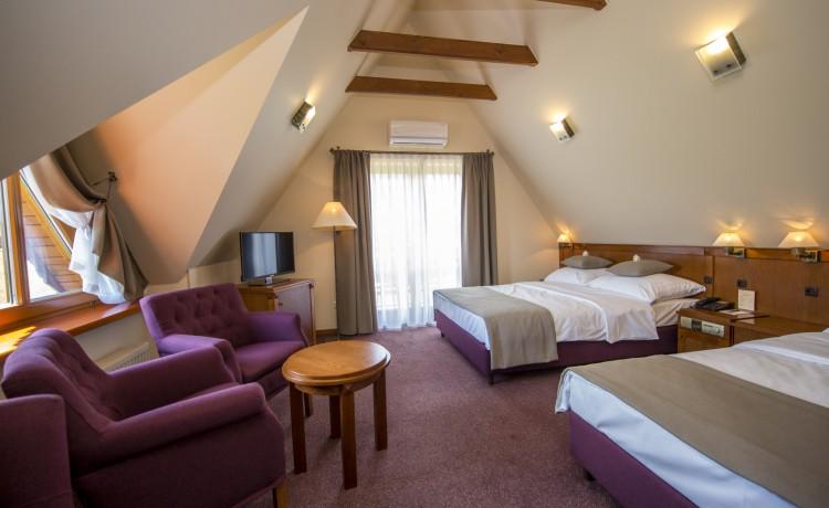 Hotel *** Hotel Redyk Ski&Relax / 14