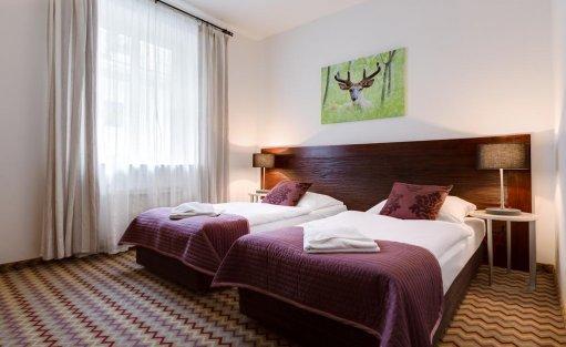 Hotel *** Hotel Sasanka *** / 12