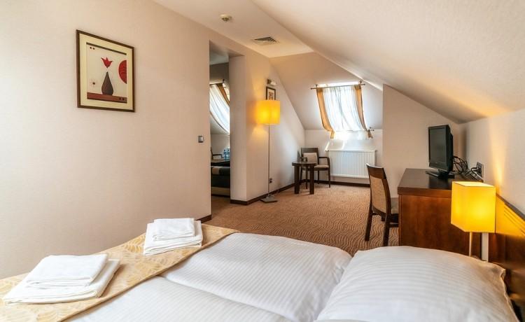 Hotel **** Hotel Stok / 8