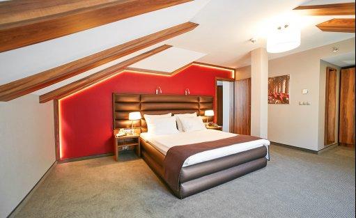 Hotel ***** Holiday Inn Krakow City Centre / 12