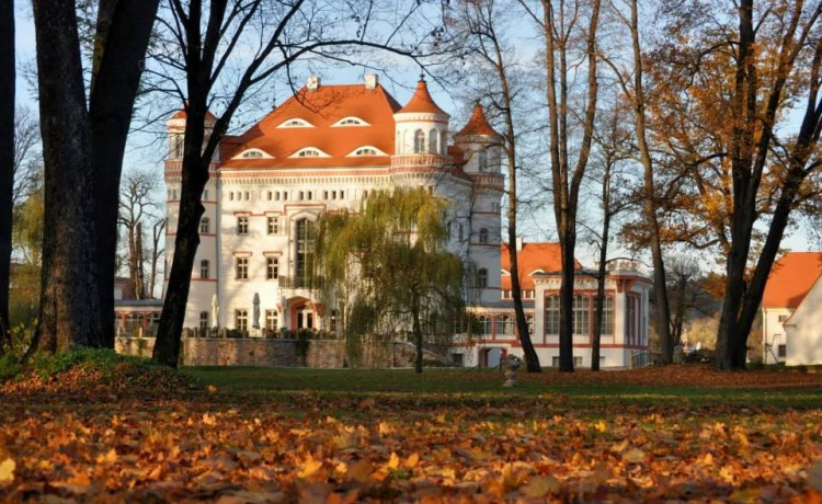 Pałac Pałac Paulinum / 2