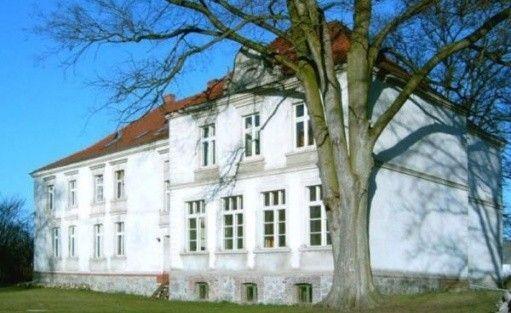 zdjęcie obiektu, Pałac w Boduszewie, Boduszewo k. Murowanej Gośliny