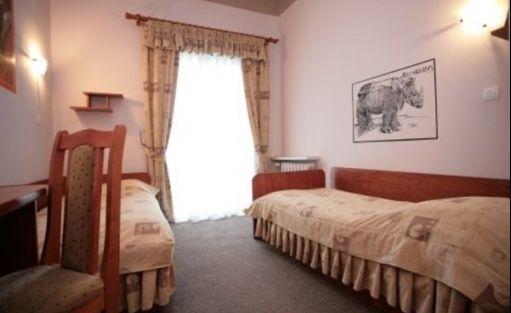 zdjęcie pokoju, ArtHotel Nikifor, Krynica-Zdrój