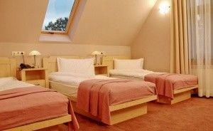 zdjęcie pokoju, Villa Elise Park Pension, Stronie Śląskie