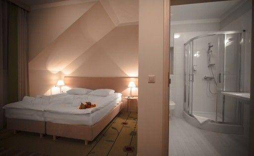 Hotel **** Hotel****SPA Wieniawa w Rekowie Górnym / 4