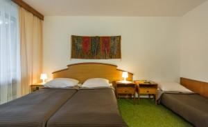 Hotel Tatry Hotel *** / 12