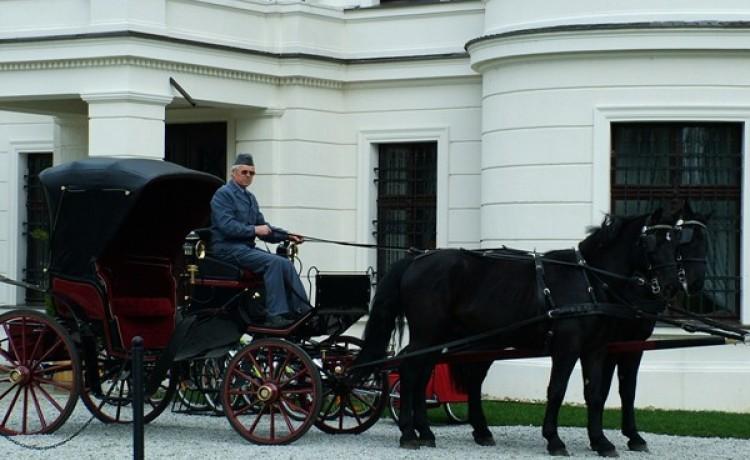 zdjęcie usługi dodatkowej, Pałac Wiejce - Hotel i Centrum Konferencyjno-Szkoleniowe, Poznań