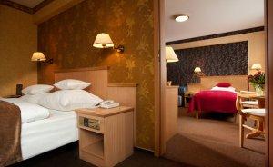 Centrum Hotelowo-Konferencyjne Witek Hotel **** / 1
