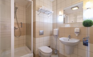 Dal Hotel Kielce Hotel *** / 6