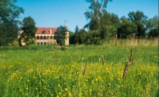 Pałace, dworki, zamki Pałac Krobielowice / 33