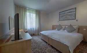 Hotel Kuźnia Napoleońska Hotel *** / 1