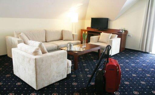 Hotel **** Park Hotel Łysoń**** / 11
