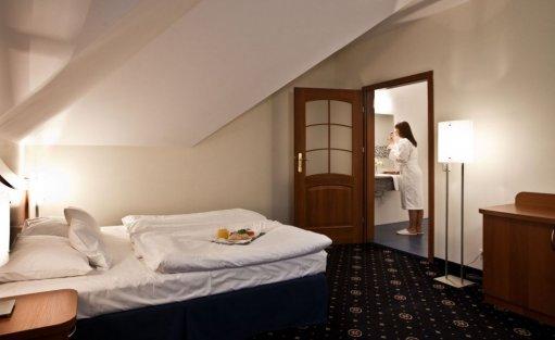 Hotel **** Park Hotel Łysoń**** / 9