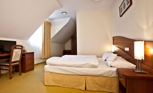 Hotel **** Park Hotel Łysoń**** / 13