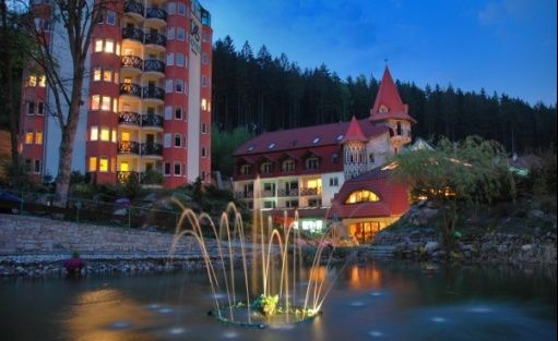 zdjęcie obiektu, Hotel Las, Piechowice