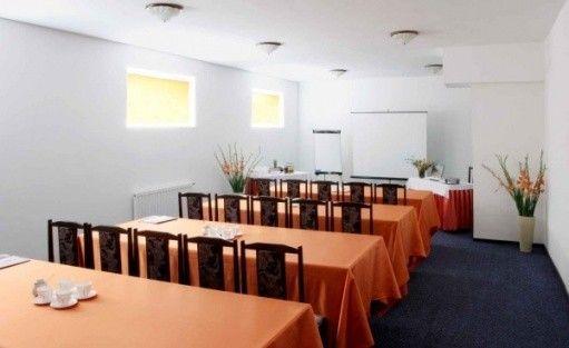 zdjęcie sali konferencyjnej, Hotel Merkury, Straszyn