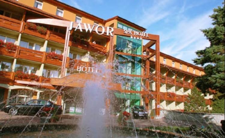 zdjęcie obiektu, SPA hotel jawor, Jaworze