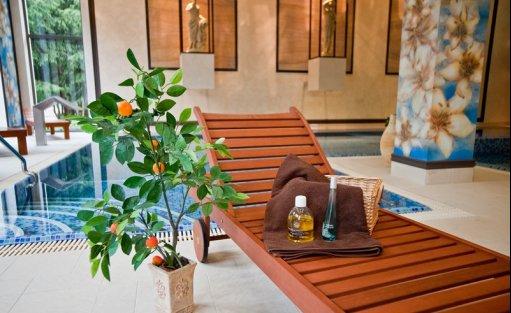 Centrum szkoleniowo-konferencyjne Hotel Afrodyta **** Business & SPA / 20
