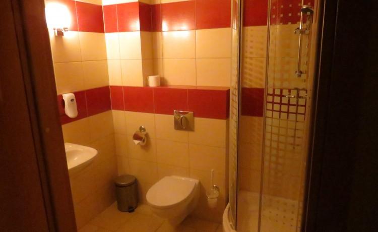 Hotel *** Hotel Daglezja nad Jeziorem Kórnickim / 7