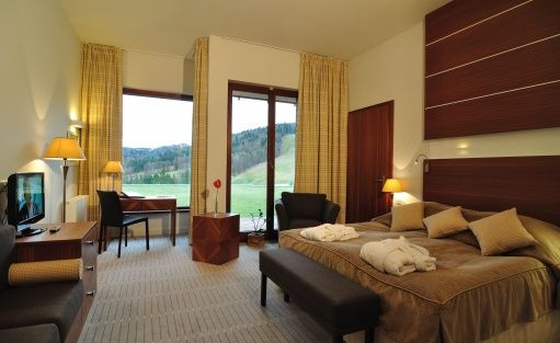 Hotel **** Hotel SPA Dr Irena Eris Krynica Zdrój / 14