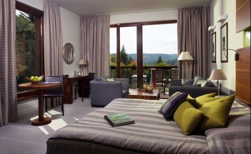 Hotel **** Hotel SPA Dr Irena Eris Krynica Zdrój / 9