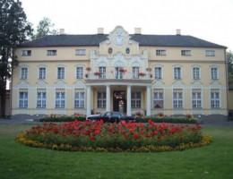 Pałac Witaszyce