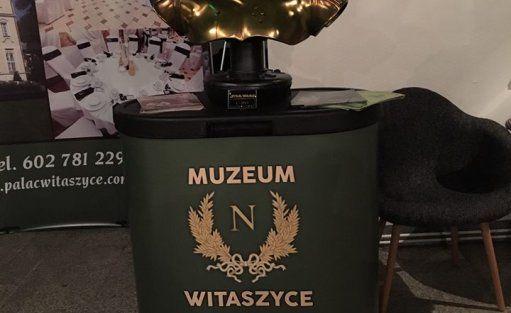 Pałac Pałac Witaszyce / 14