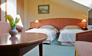 VILLA HOFF Wellness & Spa Villa / 1