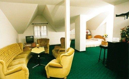 zdjęcie pokoju, Hotel Zbyszko***, Nowogród