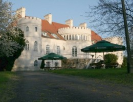 Pałac w Janowicach